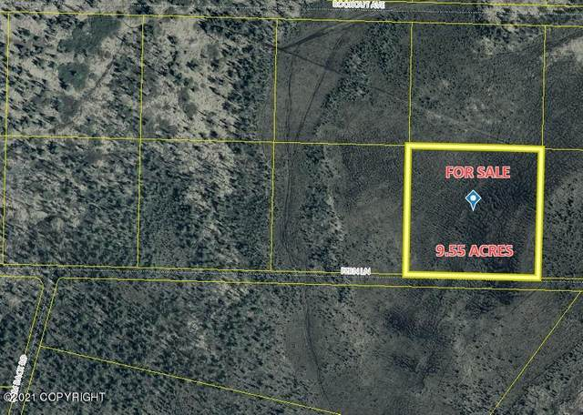 TR 46 Fern Lane, Anchor Point, AK 99556 (MLS #21-857) :: Wolf Real Estate Professionals