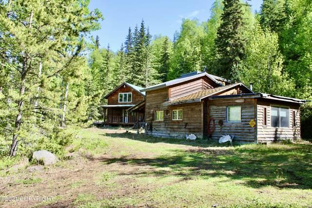 18331 N Fish Lake Road, Chickaloon, AK 99674 (MLS #21-8604) :: Wolf Real Estate Professionals