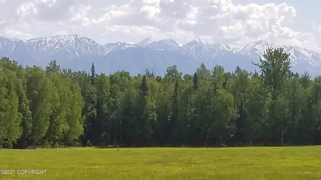 541 W Wilmington Drive, Wasilla, AK 99645 (MLS #21-8625) :: Alaska Realty Experts