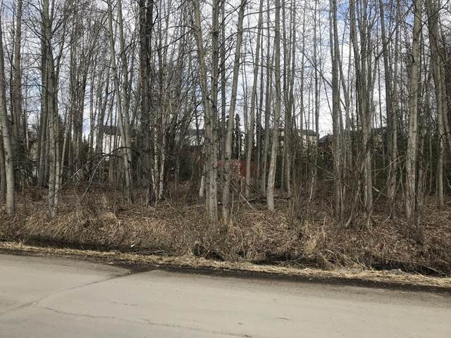 L16 Spruce Street, Anchorage, AK 99507 (MLS #21-8649) :: Wolf Real Estate Professionals