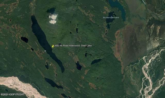 L49D No Road, Remote, AK 99000 (MLS #21-8705) :: Wolf Real Estate Professionals