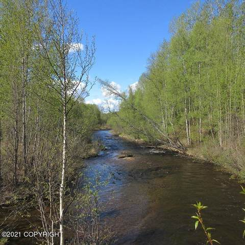A001 E Goose Creek Comm Center Road, Talkeetna, AK 99676 (MLS #21-9059) :: Daves Alaska Homes
