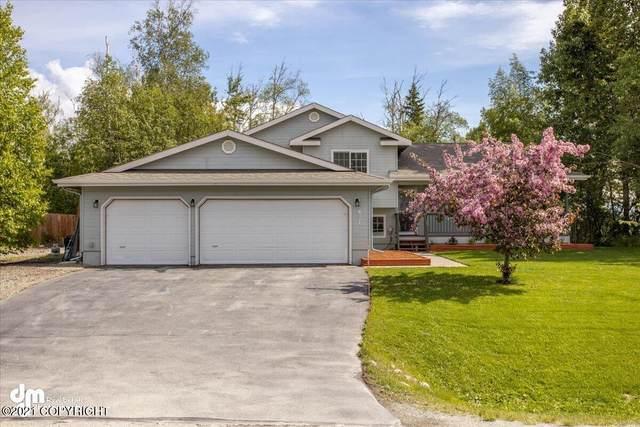 831 S Pinnacle Mountain Drive, Palmer, AK 99645 (MLS #21-9076) :: Synergy Home Team