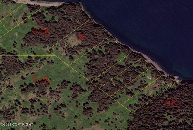 NHN Kupreanof Strait, Port Lions, AK 99550 (MLS #21-9079) :: Wolf Real Estate Professionals