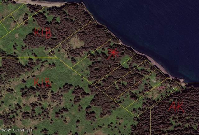 NHN Kupreanof Strait, Port Lions, AK 99550 (MLS #21-9094) :: Wolf Real Estate Professionals
