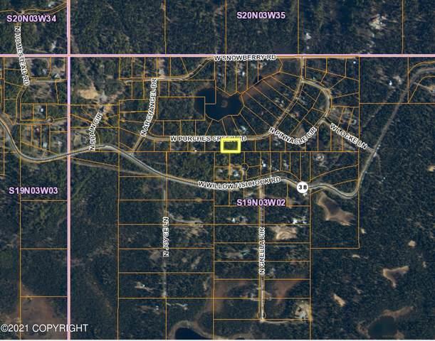 12922 W Purches Creek Road, Willow, AK 99688 (MLS #21-9103) :: RMG Real Estate Network | Keller Williams Realty Alaska Group