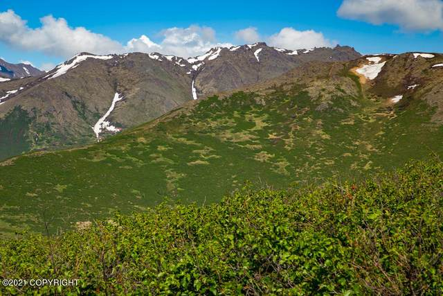 L1 Paine Road, Anchorage, AK 99516 (MLS #21-9134) :: RMG Real Estate Network | Keller Williams Realty Alaska Group
