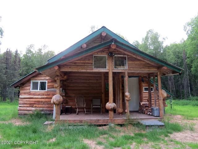 32418 S Mckinley View Drive, Talkeetna, AK 99676 (MLS #21-9244) :: Daves Alaska Homes