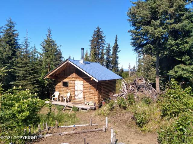 67811 Candle Court, Anchor Point, AK 99556 (MLS #21-9285) :: Wolf Real Estate Professionals