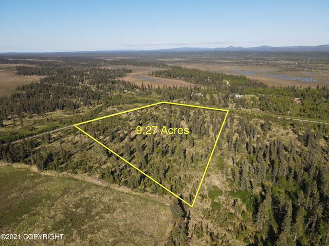 000 Nite Hawk Ct Highway, Anchor Point, AK 99556 (MLS #21-9442) :: Wolf Real Estate Professionals