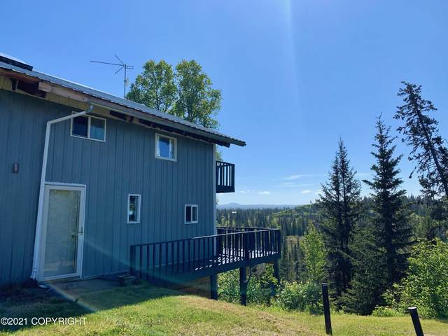 22200 Creek View Road, Ninilchik, AK 99639 (MLS #21-9461) :: RMG Real Estate Network | Keller Williams Realty Alaska Group