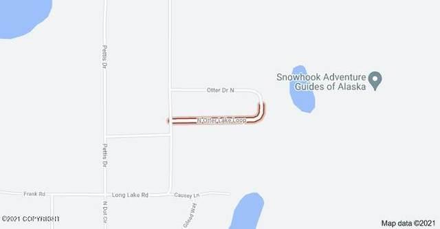 24600 N Otter Lake Loop, Willow, AK 99688 (MLS #21-9549) :: RMG Real Estate Network | Keller Williams Realty Alaska Group