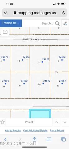 24642 N Otter Lake Loop, Willow, AK 99688 (MLS #21-9551) :: RMG Real Estate Network | Keller Williams Realty Alaska Group