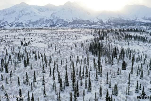 B3-L5 Denali Jack River Canyon, Cantwell, AK 99729 (MLS #21-9598) :: RMG Real Estate Network   Keller Williams Realty Alaska Group