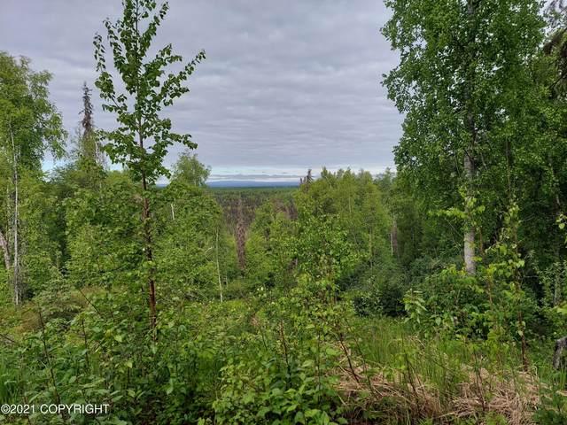 39757 S Malaspina Loop, Talkeetna, AK 99676 (MLS #21-9623) :: RMG Real Estate Network | Keller Williams Realty Alaska Group