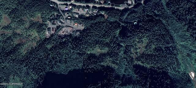 Mi 2.5 Copper River Highway, Cordova, AK 99574 (MLS #21-975) :: Wolf Real Estate Professionals