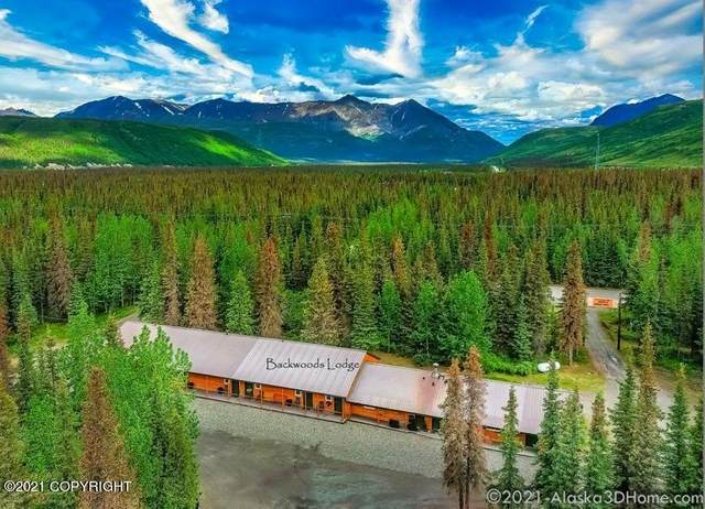 MP 133.7 Denali Highway, Cantwell, AK 99729 (MLS #21-9933) :: Wolf Real Estate Professionals