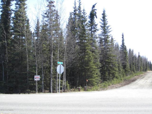34665 Sterling Highway, Sterling, AK 99672 (MLS #11-4780) :: Wolf Real Estate Professionals