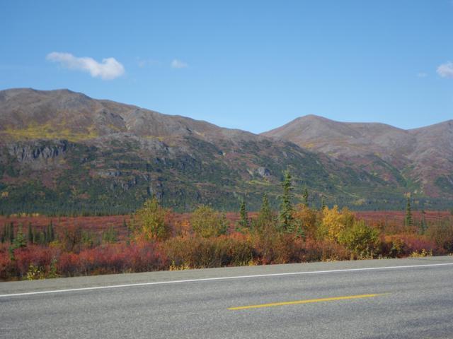 000 No Road, Cantwell, AK 99000 (MLS #14-1204) :: RMG Real Estate Network | Keller Williams Realty Alaska Group