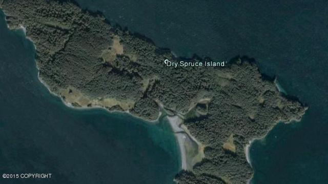 000 Dry Spruce Island, Port Lions, AK 99550 (MLS #15-5818) :: Northern Edge Real Estate, LLC