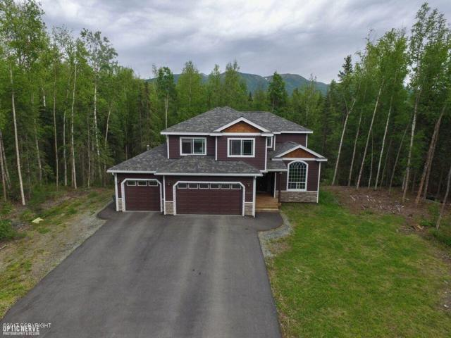 18600 Mink Creek Drive, Chugiak, AK 99567 (MLS #17-10124) :: RMG Real Estate Experts