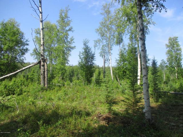 Tr F Echo Lake Road, Big Lake, AK 99652 (MLS #17-11696) :: Core Real Estate Group
