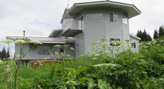 40755 Misty Ridge Road, Homer, AK 99603 (MLS #17-12311) :: Real Estate eXchange