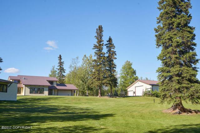 1450 W Patricia Avenue, Wasilla, AK 99654 (MLS #17-12602) :: Real Estate eXchange