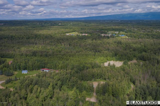 0000 S Woody Lane, Wasilla, AK 99654 (MLS #17-13425) :: Channer Realty Group