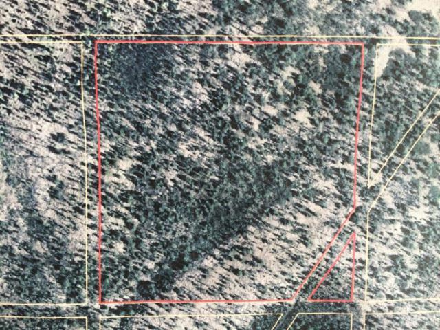 14235 Caribou Hills Rem Sw, Ninilchik, AK 99639 (MLS #17-13497) :: Core Real Estate Group