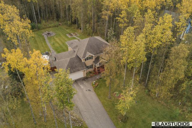 3864 N Inspiration Loop, Wasilla, AK 99654 (MLS #17-16407) :: Channer Realty Group