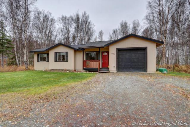 6480 N Talgach View Drive, Wasilla, AK 99654 (MLS #17-17459) :: Northern Edge Real Estate, LLC