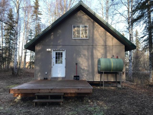 10589 N Credo Drive, Willow, AK 99688 (MLS #17-17566) :: RMG Real Estate Experts