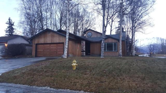 201 N Gloria Street, Palmer, AK 99645 (MLS #17-19776) :: RMG Real Estate Experts