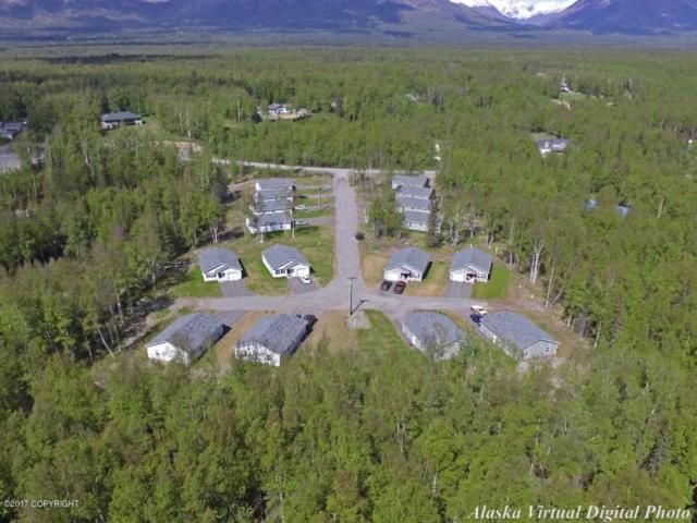 6500 E Tex-Al Drive, Wasilla, AK 99654 (MLS #17-19895) :: Channer Realty Group