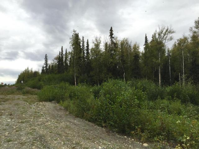 8510 W Hollywood Road, Wasilla, AK 99623 (MLS #17-9852) :: Channer Realty Group