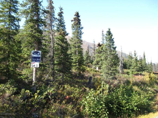 L1 B2 West River Drive, Eagle River, AK 99577 (MLS #18-1001) :: Core Real Estate Group