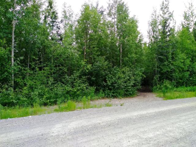 L16B B1 Satisfied Drive, Wasilla, AK 99654 (MLS #18-10579) :: Core Real Estate Group