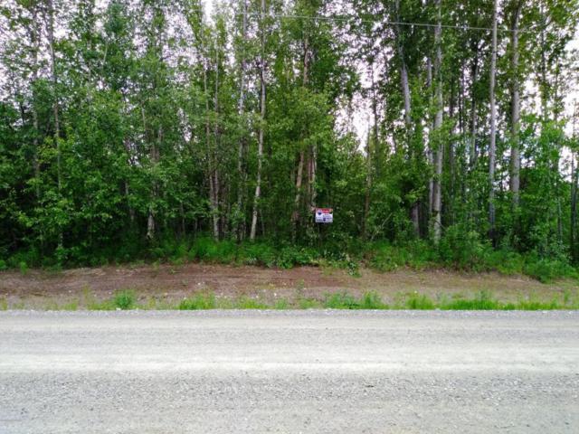 1026 N Satisfied Drive, Wasilla, AK 99654 (MLS #18-10580) :: Core Real Estate Group