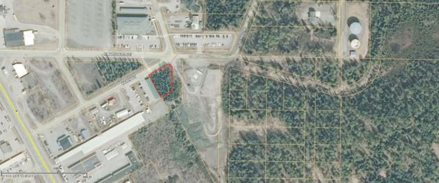 199 Karen Street, Soldotna, AK 99669 (MLS #18-1166) :: Northern Edge Real Estate, LLC