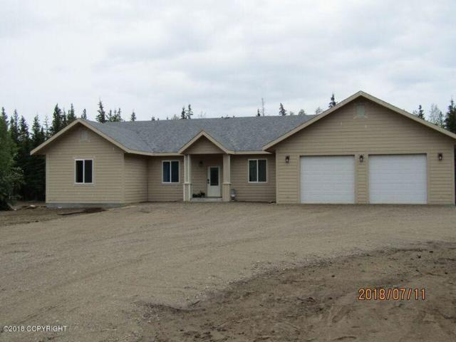 2820 Hannon Road, Delta Junction, AK 99737 (MLS #18-12104) :: Channer Realty Group