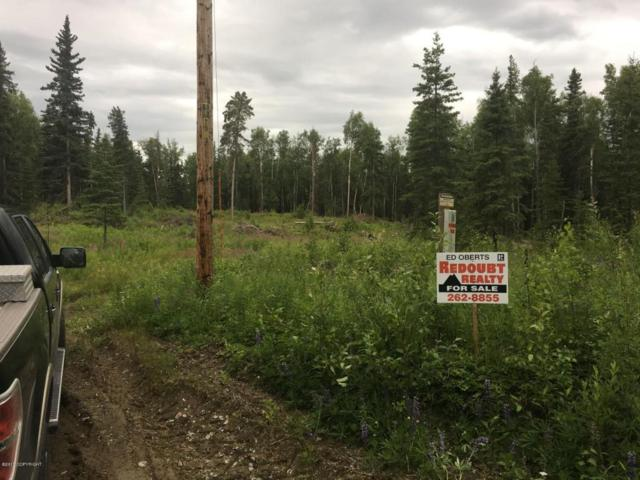 39155 Adkins Road, Sterling, AK 99672 (MLS #18-12249) :: Core Real Estate Group