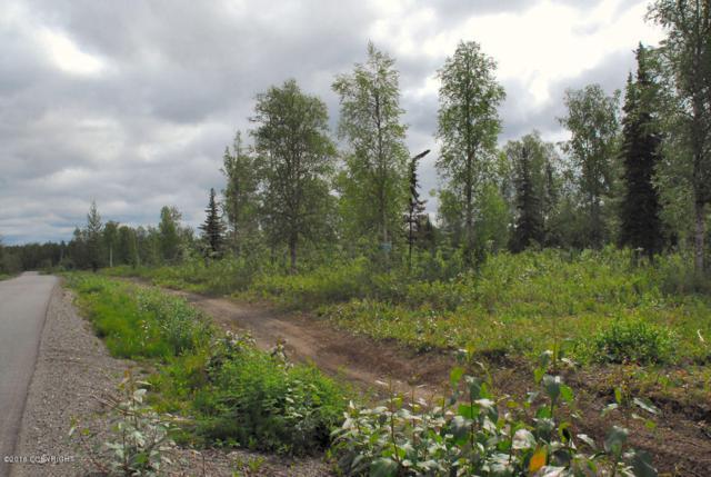 26238 W Shirley Lake Road, Willow, AK 99688 (MLS #18-12351) :: RMG Real Estate Network | Keller Williams Realty Alaska Group