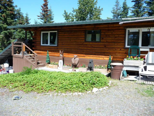 39064 Taxidermy Road, Anchor Point, AK 99556 (MLS #18-12748) :: Northern Edge Real Estate, LLC