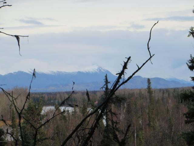 35370 Fishermans Road, Soldotna, AK 99669 (MLS #18-13268) :: Alaska Realty Experts