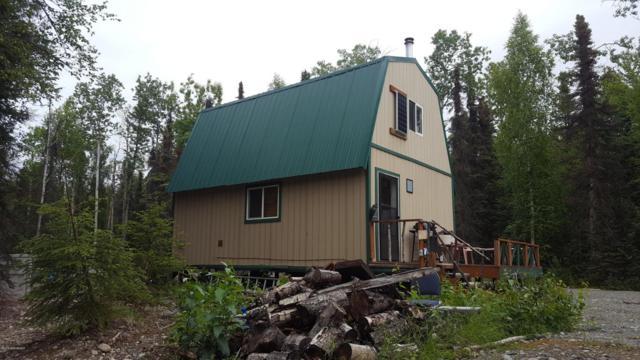 19743 E Good Fishin Avenue, Willow, AK 99688 (MLS #18-13689) :: RMG Real Estate Network | Keller Williams Realty Alaska Group