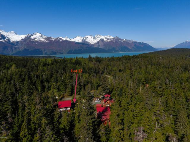 3648 Conifer Road, Haines, AK 99827 (MLS #18-14338) :: Northern Edge Real Estate, LLC