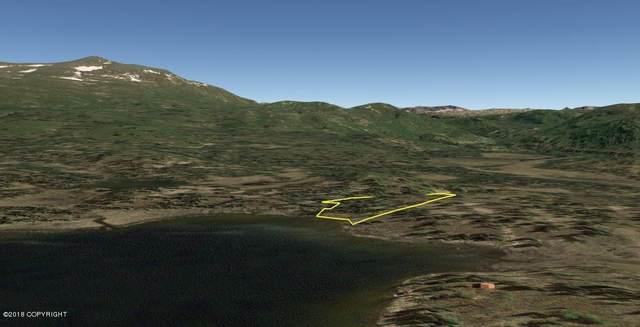 AS 90-079 Upper Heart Lake, Talkeetna, AK 99676 (MLS #18-14768) :: Daves Alaska Homes