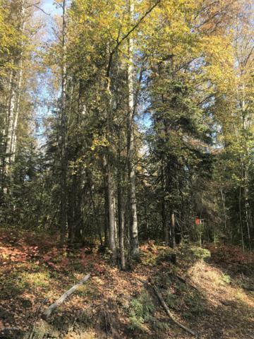 4029 S Lake View Loop, Big Lake, AK 99652 (MLS #18-15411) :: Team Dimmick