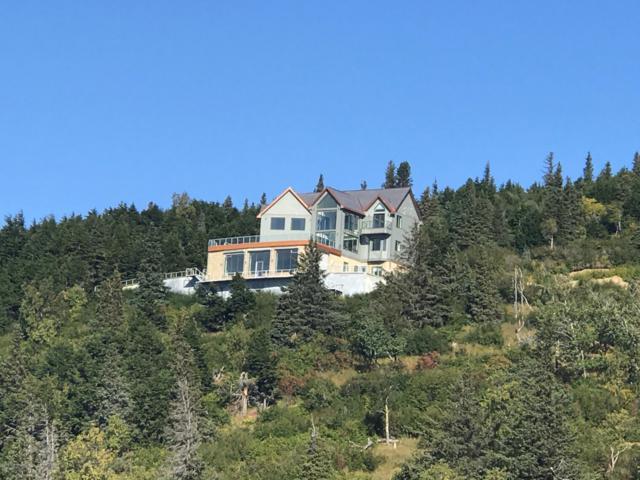 7670 Big Mountain Drive, Anchorage, AK 99516 (MLS #18-15800) :: Northern Edge Real Estate, LLC